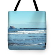 Bass Rock And Beach At North Berwick Tote Bag
