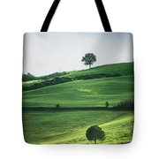 Bathed In Emerald Tote Bag