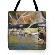 Bathing Blonde Grizzly Tote Bag