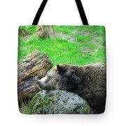 Bear Sleeping On A Rock. Tote Bag