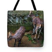 Beautiful Horns Tote Bag