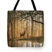 Beautiful Landscape Image Of Still Stream In Lake District Fores Tote Bag