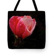 Beautiful Wet Rose Tote Bag