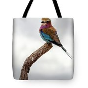 Beauty With Wings, The Lilac Breasted Roller Tote Bag