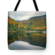 Beaver Pond Tote Bag by James Billings