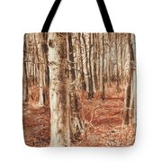 Beech Forest Tote Bag