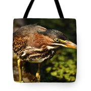 Behold The Hunter Tote Bag
