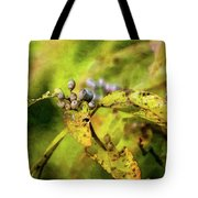 Berries And Aging Leaves 5709 Idp_2 Tote Bag