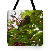 Berries And Waxwing Tote Bag