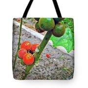 Berries In Shaman's Garden In Amazon Jungle, Peru Tote Bag