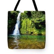 Bioko Waterfall Tote Bag