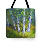 Birch Light Landscape Tote Bag