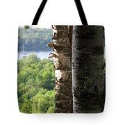 Birch Moor Tote Bag