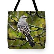 Mockingbird In Tree Tote Bag