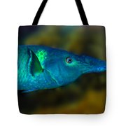 Bird Wrasse Tote Bag