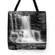 Black And White Photo Of Sheldon Reynolds Waterfalls Tote Bag by Louis Dallara