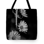 Black And White Prairie Sunflowers Tote Bag by Dan Sproul