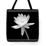 Black And White Water Lily Tote Bag