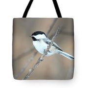 Black-capped Chickadee In Spring Tote Bag