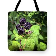 Black Raspberries  Tote Bag