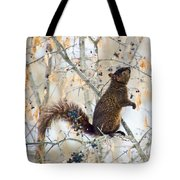 Black Squirrel Eating Berries In Winter Tote Bag by Peggy Collins