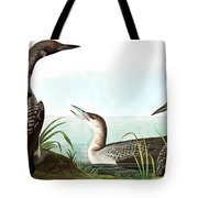 Black Throated Diver, Colymbus Arcticus By Audubon Tote Bag