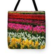 Blazing Tulips Tote Bag