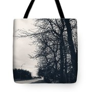 Bleak, Barren Trees Lining A Vacant Street Tote Bag