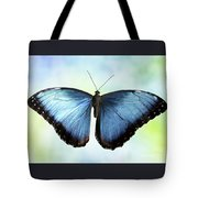 Blissful Blue Morpho Butterfly Tote Bag by Sabrina L Ryan