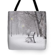 Blizzard In The Park Tote Bag