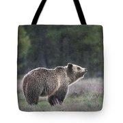 Blondie The Bear Tote Bag