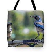 Blu And Blu2 Tote Bag