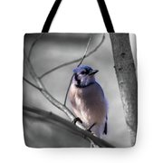 Blue Jay Tote Bag by Dheeraj Mutha