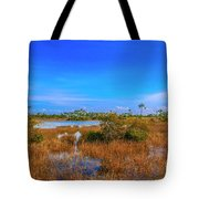 Blue Sky And Marsh Tote Bag by Tom Claud