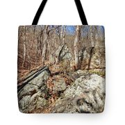 Boulders Along The Trail Tote Bag