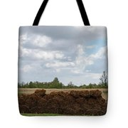 Bound Reeds Tote Bag by Anjo Ten Kate