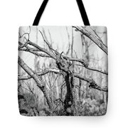 Branches In Black And White Tote Bag