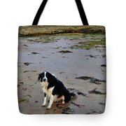 Brodie And Bass Rock Tote Bag