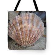 Brown Cockle Shell And Driftwood 2 Tote Bag