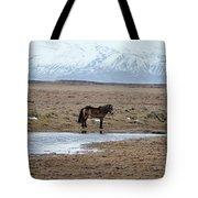 Brown Icelandic Horse In Profile Near Stream Tote Bag