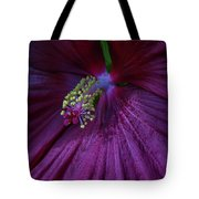 Burgundy Hibiscus Tote Bag