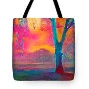 Bush Sunset  Tote Bag by Chris Armytage