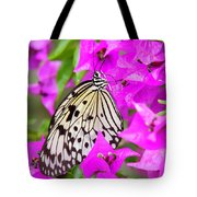 Butterfly In The Pink Tote Bag by Sabrina L Ryan