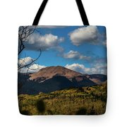 By The Power Of Graysill Tote Bag