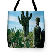 Cactus Twins Have Company Tote Bag