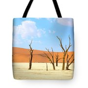 Camel Thorn Trees In Sossusvlei, Namibia Tote Bag