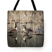 Canada Geese On The Marsh Tote Bag by Jemmy Archer