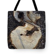 Canal Stumps-013 Tote Bag