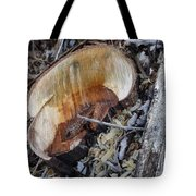 Canal Stumps-014 Tote Bag