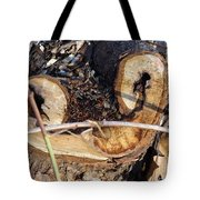 Canal Stumps-017 Tote Bag